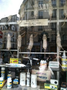 Auroze shop window
